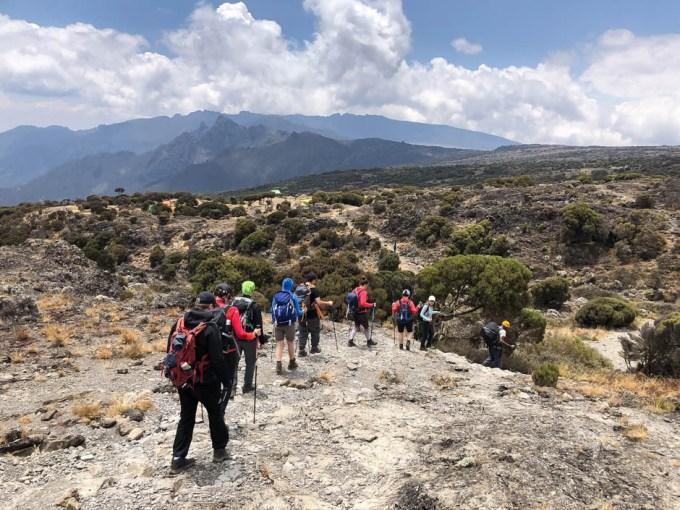 Trekking Kili plaskowyz shira