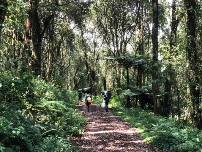 Trekking Kilimandzaro trek