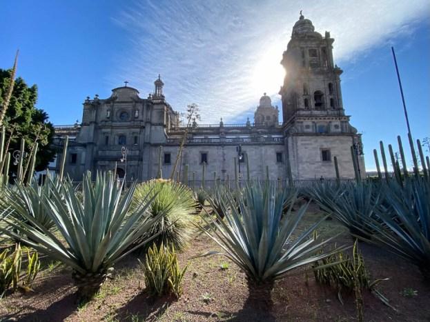 Mexico City katedra