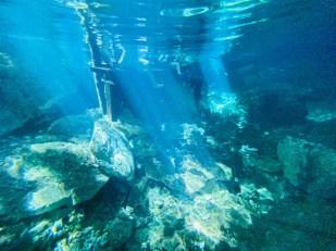 Tulum Cenote Dos Ojos snorkeling 5