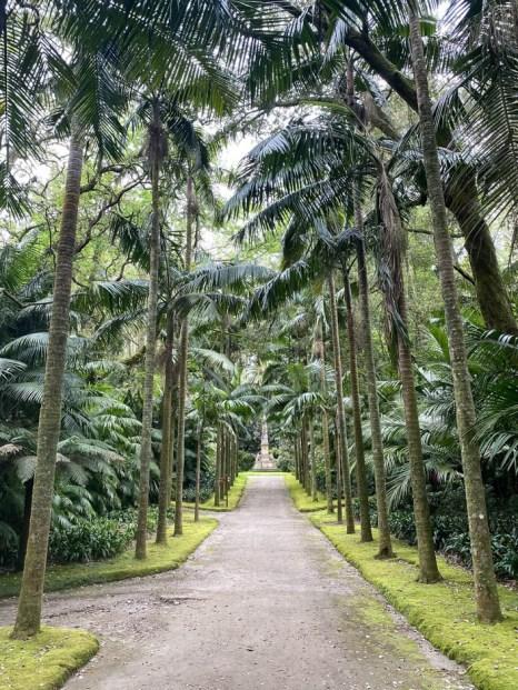 Palmy w parku Terra Nostra