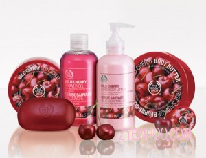 Body Shop Pack