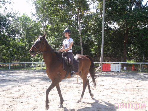 Ika riding Lucky in the paddock