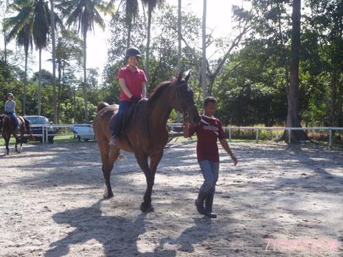 Jocey rides
