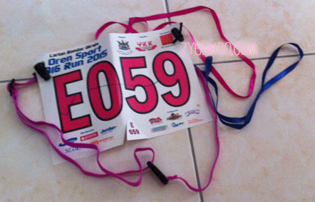 My bib, which only has the number. No identifying name or other information provided during registration. The bib belt is my own. The blue ribbon was given during one of the checkpoints in the run.