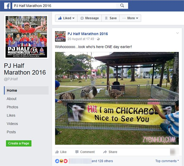 The ostriches had been announced on PJ Half Marathon's Facbeook Page before the run event. It's just that I hadn't been following, so I wasn't aware of the ostriches!