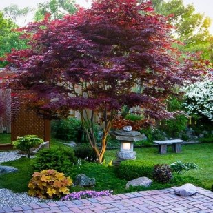 Cheap Front Yard Landscaping Ideas That Will Inspire 03