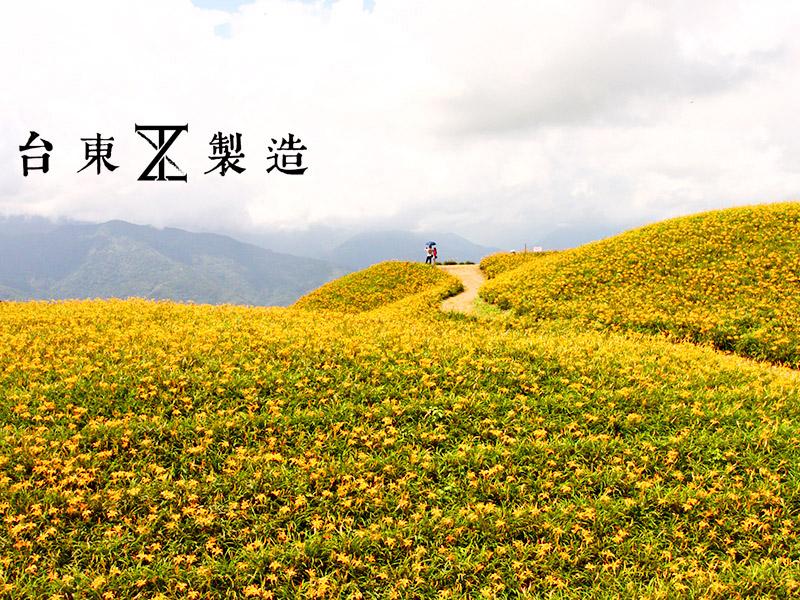 2016金針花季6-花蓮六十石山