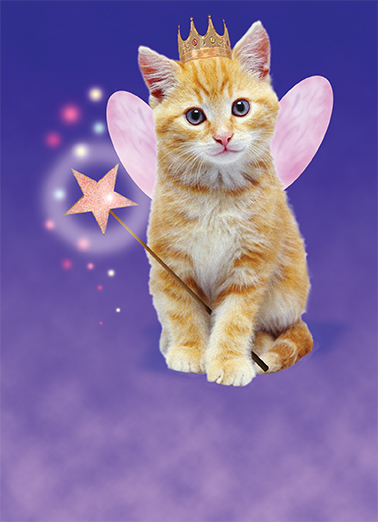 Funny Birthday Ecard Cat Fairy From