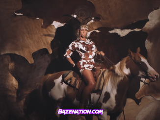 DOWNLOAD VIDEO: Beyonce – BLACK IS KING