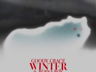 Goody Grace - Winter ft. Burna Boy Mp3 Download