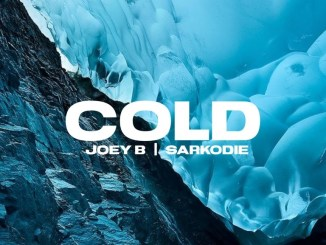 Joey B - Cold ft. Sarkodie Mp3 Download