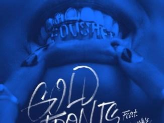 Fousheé & Lil Wayne - gold fronts Mp3 Download