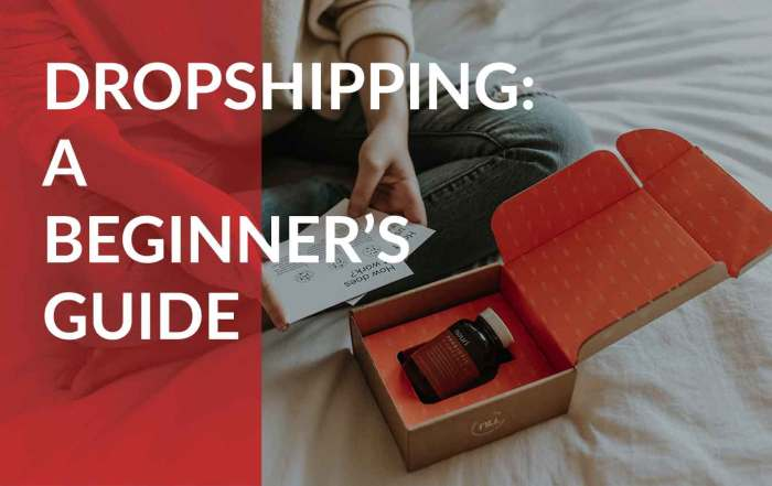 A beginner's guide to dropshipping