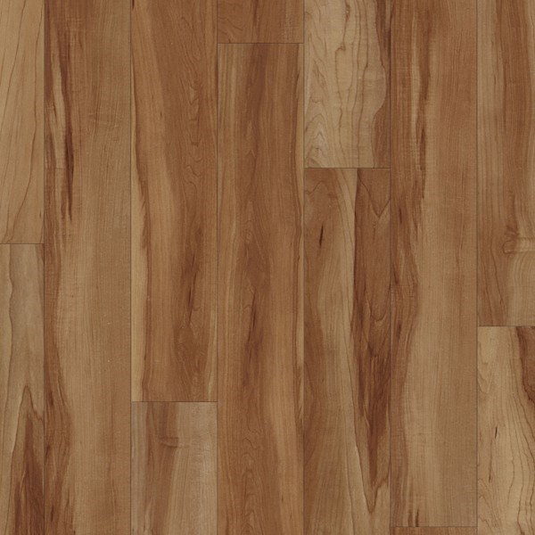 Coretec Plus Flooring Reviews