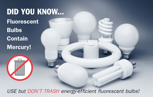 Fluorescent Bulb Disposal Bureau of Remediation and Waste