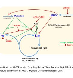 15 30 16 15 jorge bernardino de la serna rutherford appleton laboratory membrane sensing and remodelling during the immune synapse  [ 1550 x 1074 Pixel ]