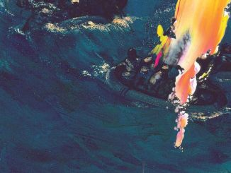 The Avalanches – Two Hearts In 3/4 Time