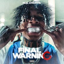 Download Final Warning by NLE Choppa mp3 audio download