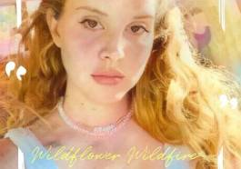 DOWNLOAD Wildflower Wildfire by Lana Del Rey mp3 download