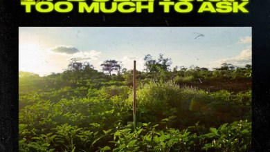 Don Diablo & Ty Dolla $ign – Too Much To Ask