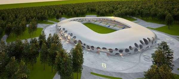 Image result for Borisov arena