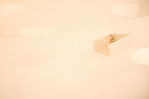 Image Courtesy © Issei Mori / Mitsuru Narihara