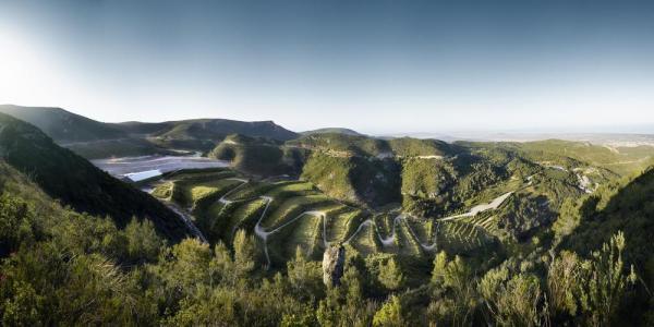 Landscape restoration of the Vall d'en Joan landfill in Begues (2002-in process, Enric Batlle, Joan Roig and Teresa Galí, in the Garraf Natural Park) Image Courtesy ©  Jordi Surroca