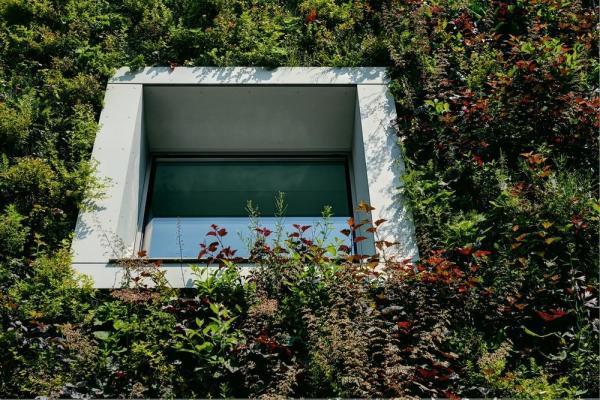 Image Courtesy © FAAB Architektura