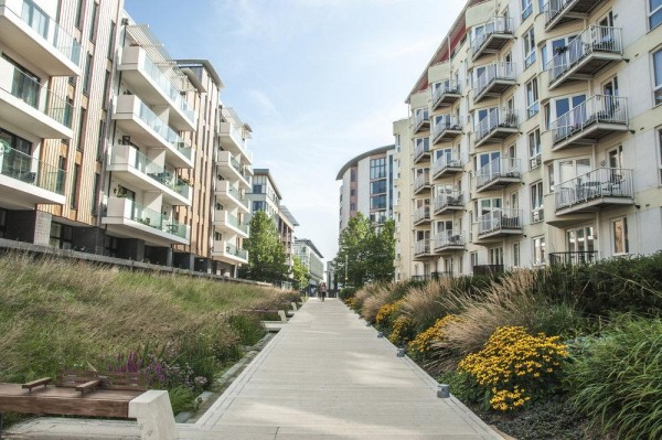 Image Courtesy © UK landscape architects Grant Associates