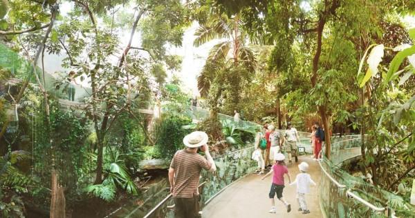 Tropical Rainforest Ecosystem, Image Courtesy © KANVA