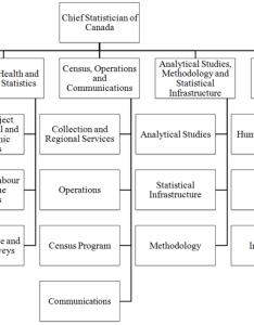 Figure statistics canada   organization chart also chapter organizational structure and matrix management rh www atcan gc