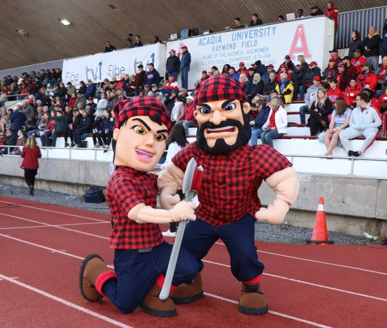 Image result for acadia axemen mascot