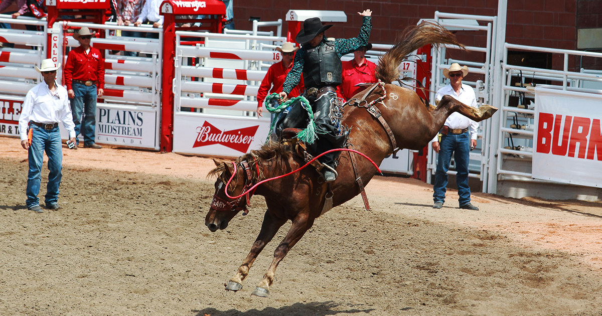 Calgary Stampede Schedule 2019  July 514  Rodeo  Concerts