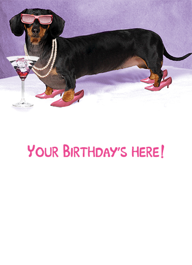 "Funny Birthday Ecard ""Hot Dog"" From CardFool Com"