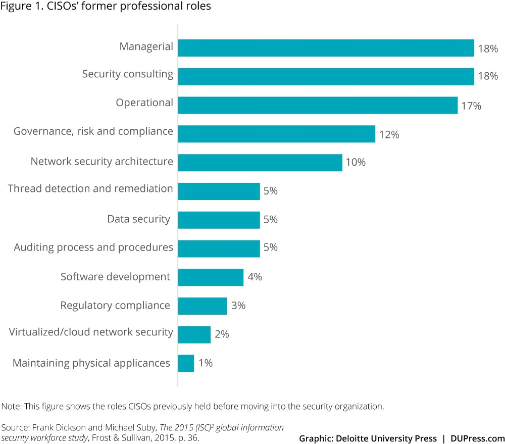 Ciso Resume The New Ciso Leading The Strategic Security Organization