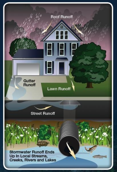 Stormwater Illustration
