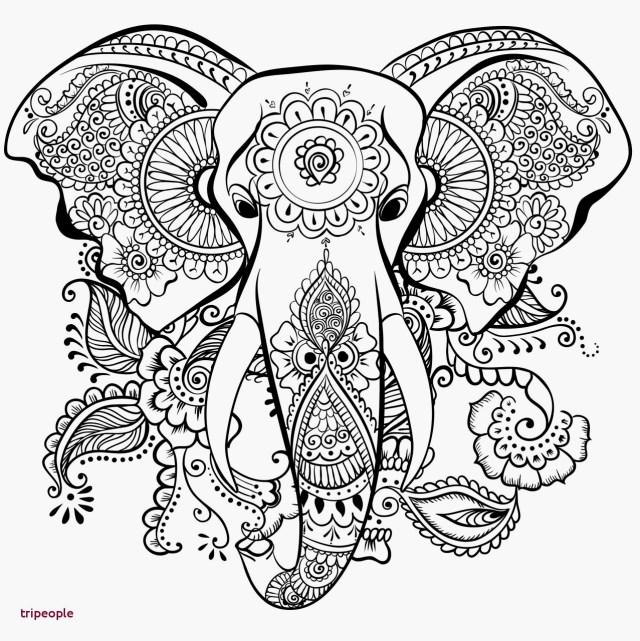 Coloriages à imprimer : Mandalas, numéro : 29d29
