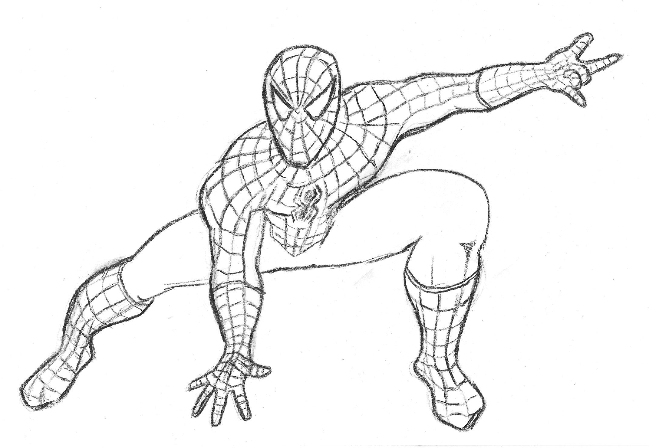 Coloriages à imprimer : Spiderman, numéro : 499368