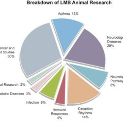 Use Animal Research Diagram Wiring For Car Radio Lmb Involving Animals Mrc Laboratory Of Molecular Biology Chart Dec 18