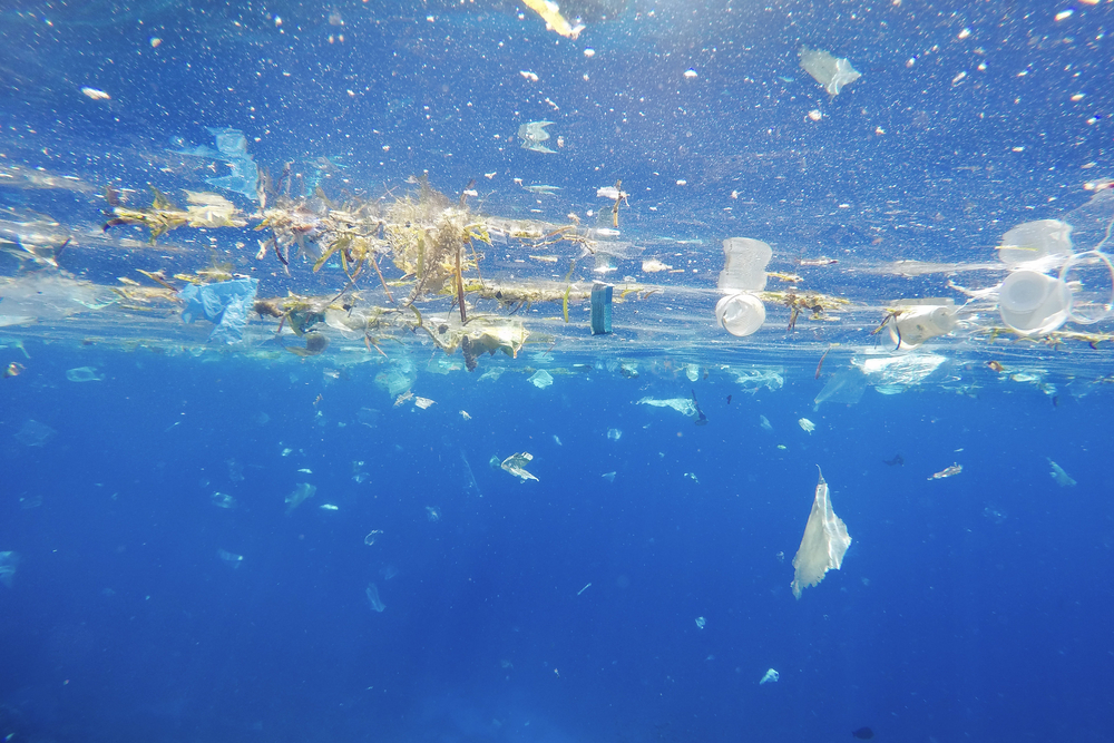 Plastic floating on the ocean's surface