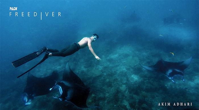 manta_freediving