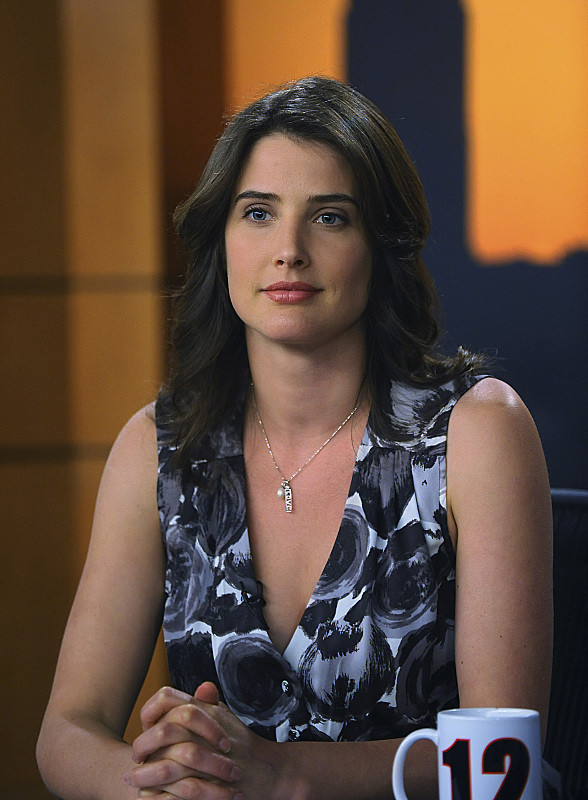 Cobie Smulders The Highest Paid Tv Stars Of All Time