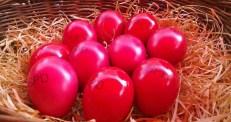 Osterstand SPD Eier