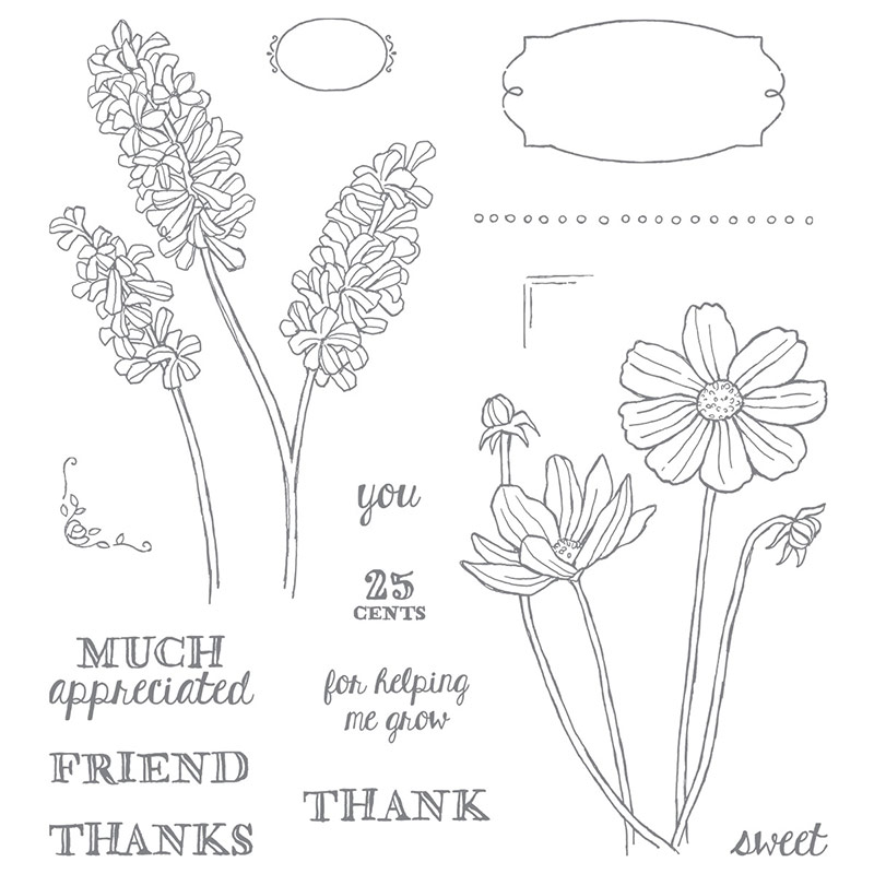 Eve Marie Makes: STAMPIN' UP! HELPING ME GROW