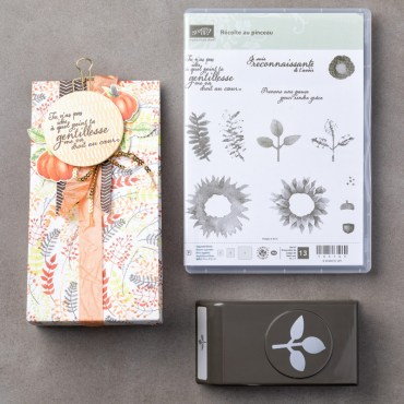 Récolte au pinceau Photopolymer Bundle (French)