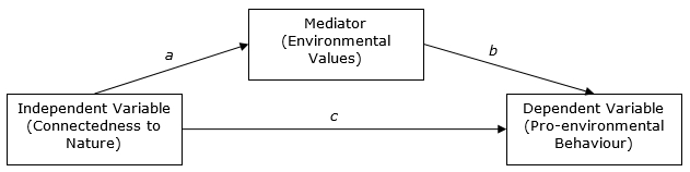 Figure 1: The mediating role of environmental values between connectedness and behaviour