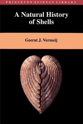 Image result for A Natural History of Shells book