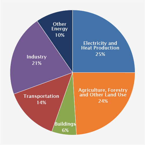 Pie chart that shows different sectors. 25 percent is from electricity and heat production; 14 percent is from transport; 6 percent is from residential and commercial buildings; 21 percent is from industry; 24 percent is from agriculture, forestry and other land use; and 10 percent is from other energy use.