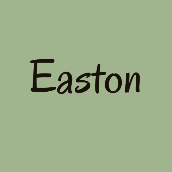 Easton  Whimsical Baby Names Straight Out of a Fairytale